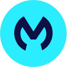 Mulesoft Icon Products